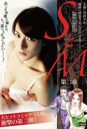 S&M Chapter 2 (2010)